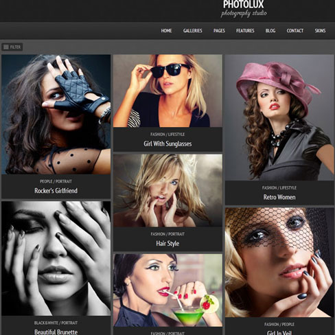 mejor tema para wordpress photolux